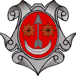 Radomin logo